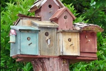 bird houses / by Joyce Weber