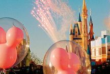 aes, disney - world and land