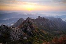 Fall Foliage / Explore beautiful autumn scenes of Korea / by Korea Tourism Organization