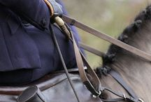 Ladies Side Saddle / All things riding aside