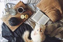 aes, mood - cozy / fall