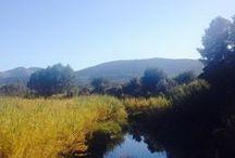 NATURALEZA EN ALCALALÍ / Alcalalí dispone de un paisaje de gran belleza paisajística y alto valor ecológico. Es atravesado por el Río Gorgos (declarado Lugar de Interés Comunitario por la Red Natura 2000)