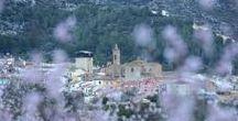"""I MARATÓN FOTOGRÁFICA """"ALCALALÍ EN FLOR"""" / Imágenes premiadas en la I Maratón fotográfica #AlcalalíEnFlor."""