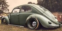 BeetleMania / All things in the beetle family.