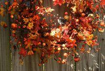 Fall is my favorite season / by Kourtney Bessemer