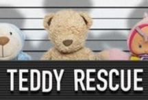 LOST: Plane Train Bus Mail / These teddy bears and stuffed cuddly toy animals have all been lost by someone in the Post, on Planes and are waiting to be found and reunited with their families. Contact: https://www.facebook.com/TeddyBearLostAndFound  / by Teddy Bear Lost and Found