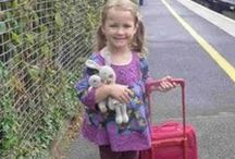 Lost teddies in the news / Lost and Found Teddy Bears and Cuddly Toys in the News
