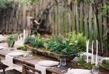 Forest wedding wonders / Trees, moss, pebbles, fairy lights, branches, succulents, ferns, lanterns