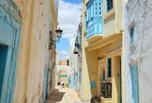 Voyages en Tunisie / Photos de la Tunisie : Tunis, Sousse, Monastir, El Jem, Matmata, Tozeur, Nefta, Kairouan, Sidi Bou Said...