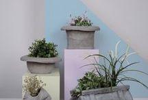 sementti  betoni ideat / sementtijuttuja piha sisä koriste ym