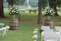 Wedding ideas from hair, dresses and decorations / by Tina Friesen