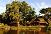 Most romantic safari camps / Leading safari commentator and camp expert Lisa Grainger names her six most romantic safari camps. www.secretearth.com/best_lists/102-most-romantic-safari-camps