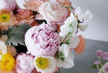 Flowers / All things floral and fabulous