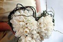 .~ <♡< Brides & Cia >♡> ~.