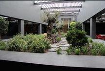 Atrium tuinen / Inspiratie Tropisch en Mediterraan