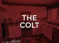 The Colt / Our Colt floor plan; 1309 square feet, 2 storey single home, 3 bedrooms