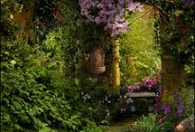 Gorgeous Gardens / by Doreen Murphy