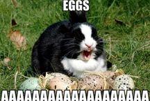 Ha ha / All things that make me laugh / by Kythe B