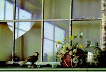 Jeffrey T. Larson / Still Life Paintings by Jeffrey T. Larson