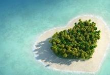 Love to Travel / by Ashley Tomlinson