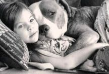 Pitty Love / by Katie Fisk