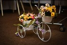 Arranjos de Primavera / Flores vivas, alegres e cheias de vida!