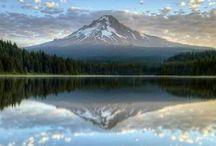 Oregon Pacific Wonderland  / by Julie Kirby