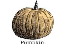 Pumpkin Items from TJ Site