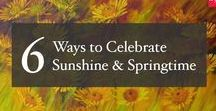 6 Ways to Celebrate Sunshine & Springtime / Winter is slowly making its way out and spring is making its presence felt. While wearing bright yellow clothes and digging into kesar halwa, spring was ushered in with a host of celebrations. Our latest spring collection shows you how to strike the right balance with yellow so that you bring in the sun indoors. #Artflute #NoMoreEmptyWalls #HomeDecor #Paintings #Art #Artists #Spring #Summer #Bright #Yellow