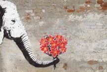 street art / by Danièle Chirol