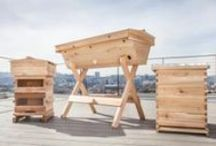 Bee Hives / Top Bar Hives, Warre, and foundationless Langstroth Hives, handmade in Portland, OR, USA / by Bee Thinking