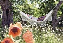 Relaxing Outdoors / Outdoor Decor