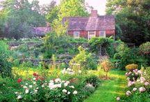 Garden ideas / Gardening, urban farming, kitchen gardens / by Julia G