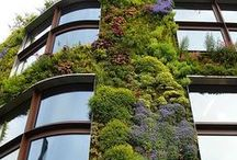 Sustainability / by Bee Thinking