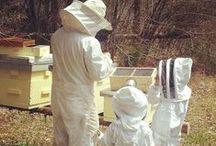 Bee A Kid