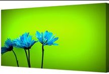 Floral / Floral canvas art prints, available in a range of canvas sizes.