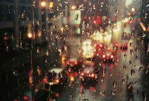 Rain / 雨