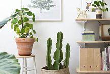 DIY | Urban living / Schöne Ideen aus dem Craftyneighboursclub für unser Zuhause, mit viel Grün und Naturmaterialien