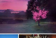 Wedding Lighting / Enchanting lighting ideas for your wedding