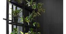 Plantes intérieur - Green inspiration / Les plantes ont énormément de bienfaits : il a été prouvé qu'introduire des plantes et végétaux dans son environnement quotidien rend plus créatifs, plus productifs et peut même réduire le stress. Découvrez nos inspirations pour parsemer de verdure votre intérieur et profitez des bienfaits des plantes et d'une jolie décoration.