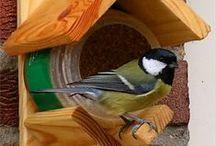 Vogelhäuser / Exklusive Vogelhäuser, Futterhäuschen in echter Handarbeit, besondere und schöne Futterstellen.