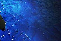 Infinity sea / Cosa diciamo quando diciamo mare ? L'acqua che teniamo nel cavo della mano, o l,abisso che nessuno può vedere ? Diciamo tutto in una parola e in una parola tutto nascondiamo? Sono qui ad un passo dal mare me e neanche riesco a capire, lui, dov'è IL MARE, IL MARE