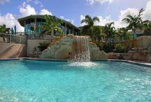 Boca West Country Club Aquatics Center / Large tropical free form pool area featuring five separate pools including a lap pool, water aerobics pool, adult pool with large grotto waterfall, whirlpool and children's pool area with playground area.