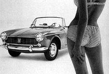 Fiat / Cars