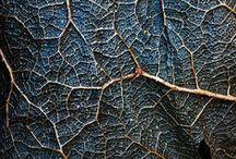 Textura / struktura faktura textura
