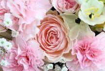 • Fleurs •