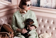 Dogs & Editorial