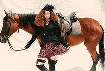 Horses & Editorial
