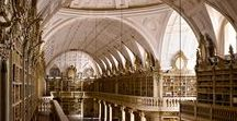 Library / Library interiors
