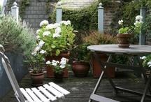 cours, jardins & terrasses...